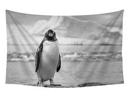 PUPBEAMO PRINTS 60x40 Inches Black and White Wall Tapestry -