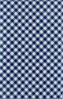 Blue Gingham Check Vinyl Tablecloth Summer Fun Outdoor Picni